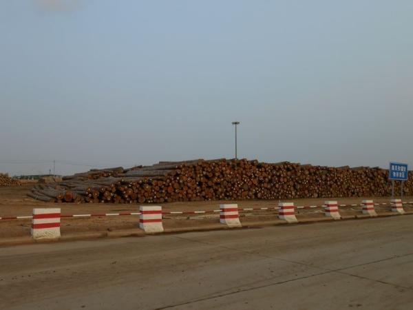 原木货场 远景